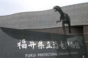 20081113_2
